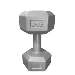 Poids De Musculation Terminator 5 Kg - Gris - TAJPLAST