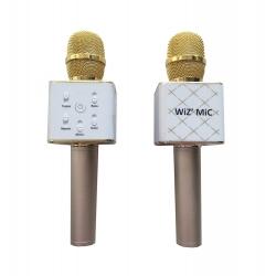 MICROPHONE DORE - AVEC HAUTS PARLEURS- OPTION USB